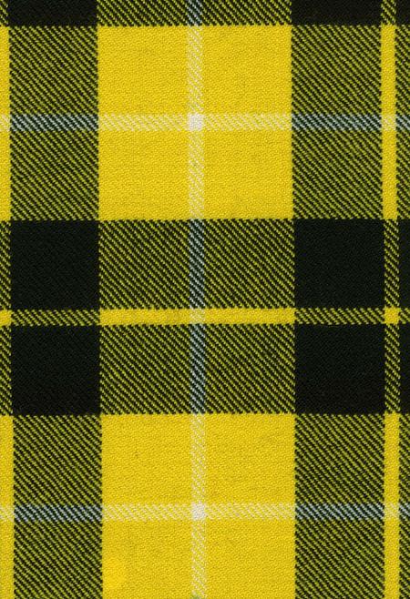 Barclay Dress Modern Tartan Fabric Swatch