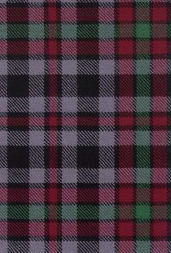 Borthwick Modern Tartan Fabric Swatch