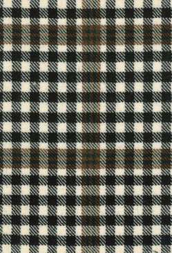 Burns Check Modern Tartan Fabric Swatch