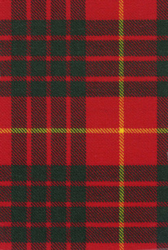 Cameron Clan Modern Tartan Fabric Swatch