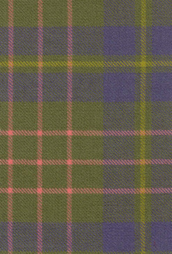 Cameron Htg Ancient Tartan Fabric Swatch