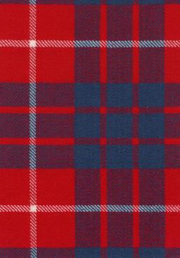 Hamilton Dress Modern Tartan Fabric Swatch