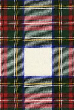 Stewart Dress Modern Tartan Fabric Swatch