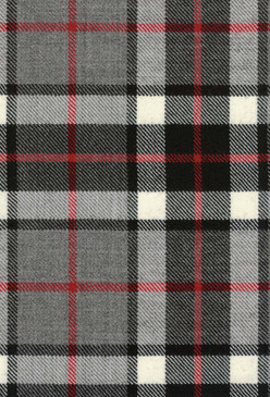 Thomson Grey Tartan Fabric Swatch