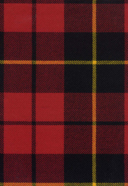 Wallace Modernod Tartan Fabric Swatch