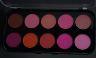 Pro 10 Color Blush Palette