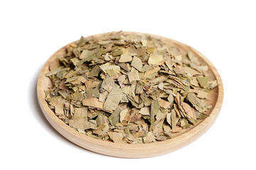 Buy Certified Organic Gingko Leaf Tea