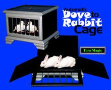 Dove to Rabbit, Automatic w/ DVD - Tora
