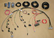 Stand Alone Fuel Injection Harness