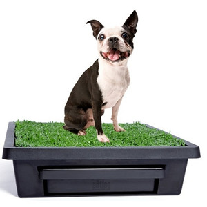 Petsafe PWM00-14497 Pet Loo Potty Training System - Small