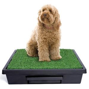 Petsafe PWM00-14499 Pet Loo Potty Training System - Large