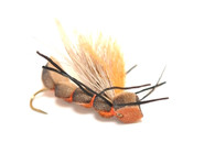 Salmonfly - Fluttering Salmonfly