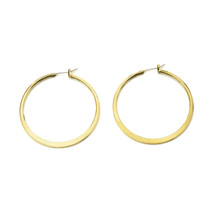 Hoop To It Earrings in Gold