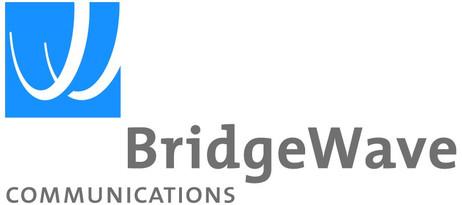 BridgeWave Communications - BW Ice Shield for Standard Units 1' Antenna