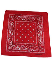 PAISLEY BANDANA. RED