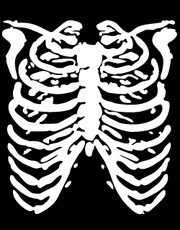 """Ribcage"" Ladies T-Shirt."