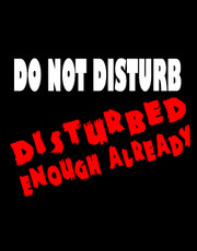 """Do Not Disturb- Disturbed Enough Already"" Ladies T-Shirt."