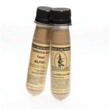 European Ale WLP011