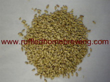 6-Row Brewers Malt 10lb (Briess)