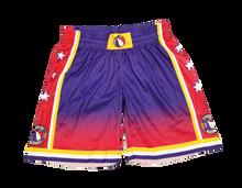 2019-2020 Replica Shorts (Purple)