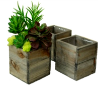 "Set of 3 Square wood planters L: 8""x8""x7""H, M: 7""x7""x6""H, S: 6""x6""x5""H"