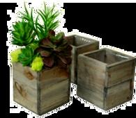 "Set of 3 Lined square wood planters L: 8""x8""x7""H, M: 7""x7""x6""H, S: 6""x6""x5""H"