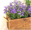"Herbs wood planter with Jute handles 20""x6""x6""H"