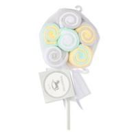 Tendertyme 12 pack Washcloth Lollipop - YELLOW/GREY
