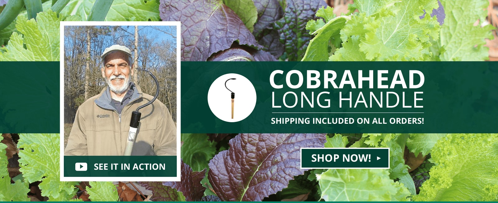 CobraHead® Long Handle Weeder & Cultivator