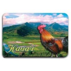 Hawaiian Magnet 2d Hanalei Kauai Vista
