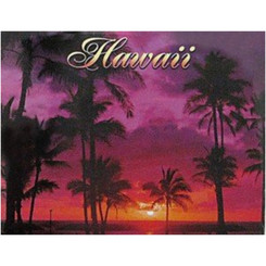 Hawaii Badge Magnet Ala Moana Sunset