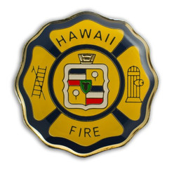 Hawaii Lapel Or Hat Pin Hfd Department Gold, Black