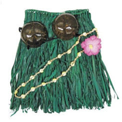 "Hawaiian Hula Grass Skirt Set Coconut Bikini Top Green Junior 22"" Waist 20"" Length"