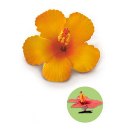 Hibiscus Clip Foam Flower Orange