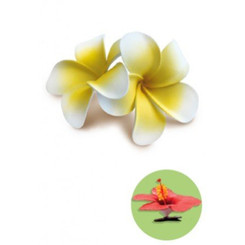 Double Plumeria Clip Foam Flowers Yellow With White Edges