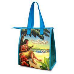 Small Non-Woven Insulated Lunch Bags Vintage Hawaii