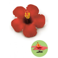 Hibiscus Clip Foam Flower Red
