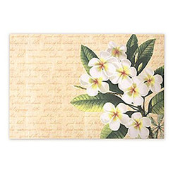 Woven Placemat Plumeria Notes Set Of 4