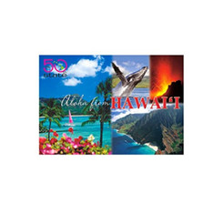 "4""X 6"" Postcards Aloha From Hawai'I The 50th State Pack Of 50"