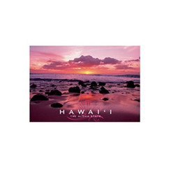 "4""X 6"" Postcards Hawai'I The Aloha State Pack Of 50"