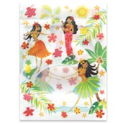 Aloha Goody Gift Bags 6 Per Pack Island Hula Honeys
