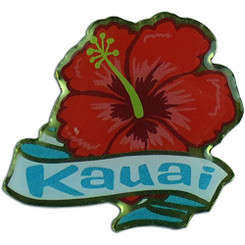 Hawaiian Lapel or Hat Pin Hibiscus Kauai
