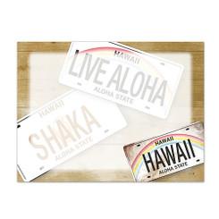 6 Rectangular Stick n Notes Hawaii License Plates