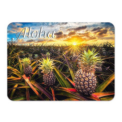 Hawaii Die-Cut Tin Magnet Aloha Pineapple