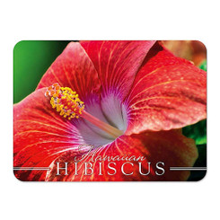Hawaii Die-Cut Tin Magnet Coral Hibiscus