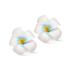 Hawaii Hair Clip Foam Baby Flowers Plumeria White