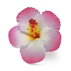 Hawaii Hair Clip Foam Flower Hibiscus Pink
