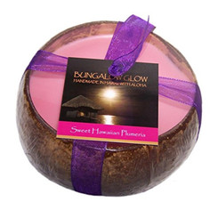 Hawaii Bubble Shack Coconut Candle Sweet Plumeria Scented