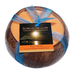 Hawaii Bubble Shack Coconut Candle Epic Nectar Mango & Coconut Scented
