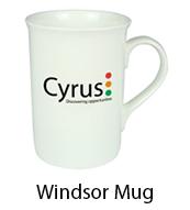 windsor-mugs-mugs-cardiff-swansea.jpg